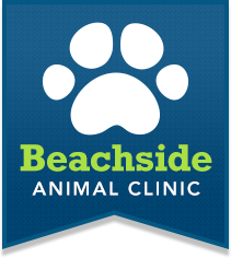 Beachside Animal Clinic